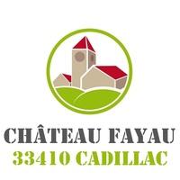 vin chateau fayau